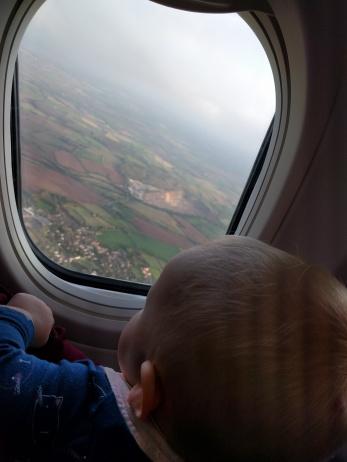 Flight out of window